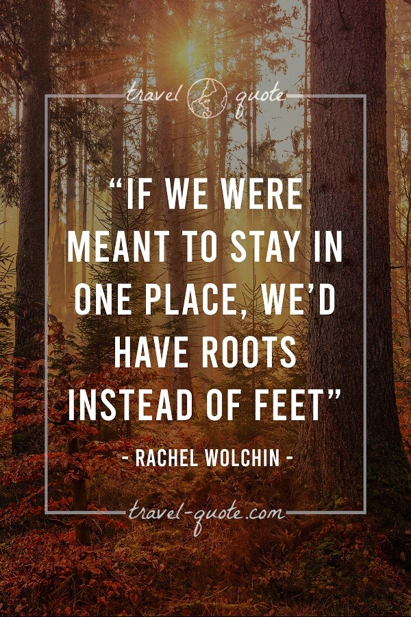 If we were meant to stay in one place, we'd have roots instead of feet. - Rachel Wolchin